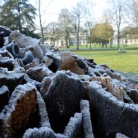 Frost covered Cork Dome
